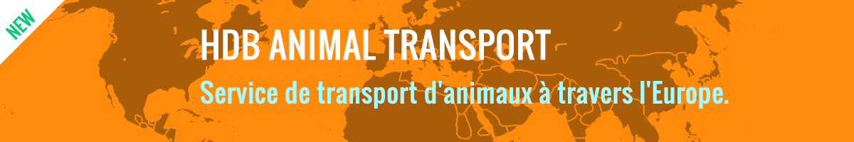Animal transport service over Europe