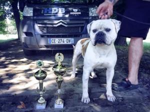 Hummer Grand Champion Abna
