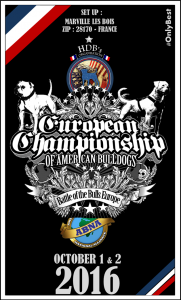 flyers-official-european-ch-2016