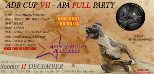 official-announce-adb-cup-vii-apa-pull-party-december-11
